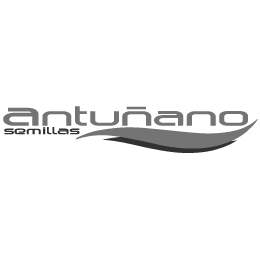 Semilla Antiñano